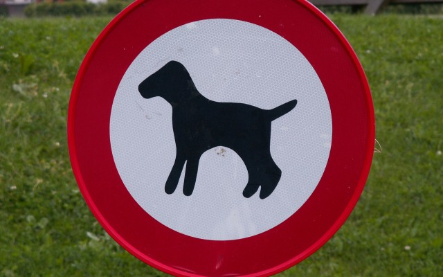 Dog Exercise Areas