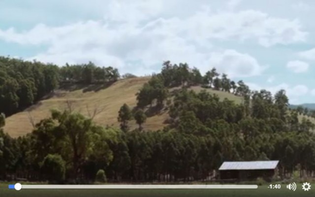 Here's just a glimpse of the Huon Valley